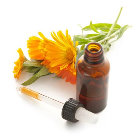 Phytotherapie / Kräutertherapie - Naturheilpraxis Nidwalden, Stans - Akupunktur, Shiatsu und Massage