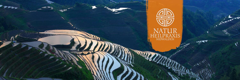 Naturheilpraxis Nidwalden | Stans | Akupunktur | Shiatsu | Tuina-Massage | Phytotherapie